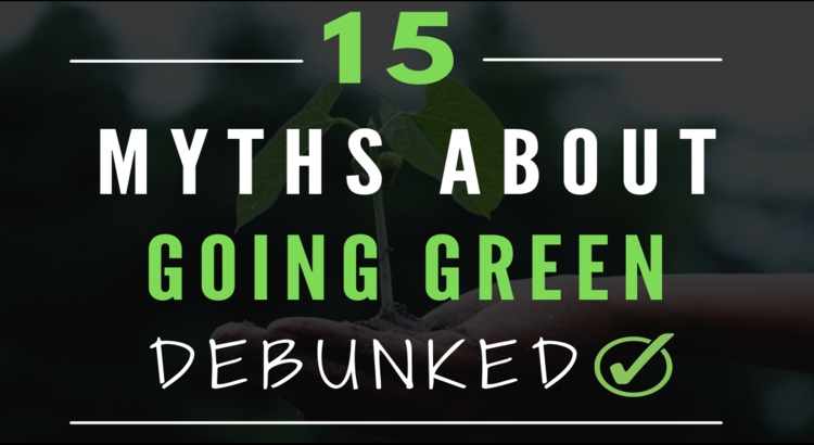 15 myths about going green and sustainable living debunked